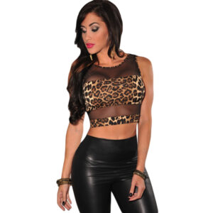 Leopard Print Mesh Accent Cropped Top - Toppi Leopardi kuviolla - Hot Avenue shop